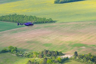 Can Helicopters spot one Plant? The Answer might Amaze you.