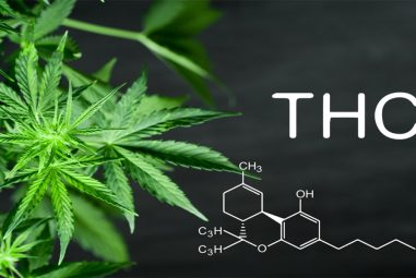 What's the Perfect Temperature of Burning THC?